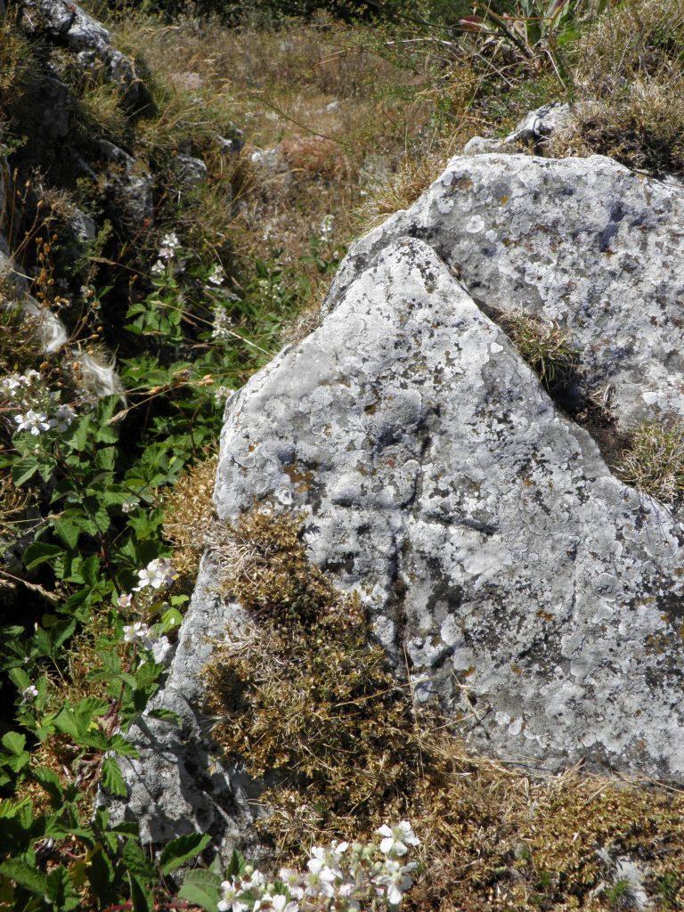 Cruz San Gregorio