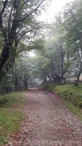 Sitios históricos Euskal Herria