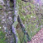 Lugaes con historia Euskadi