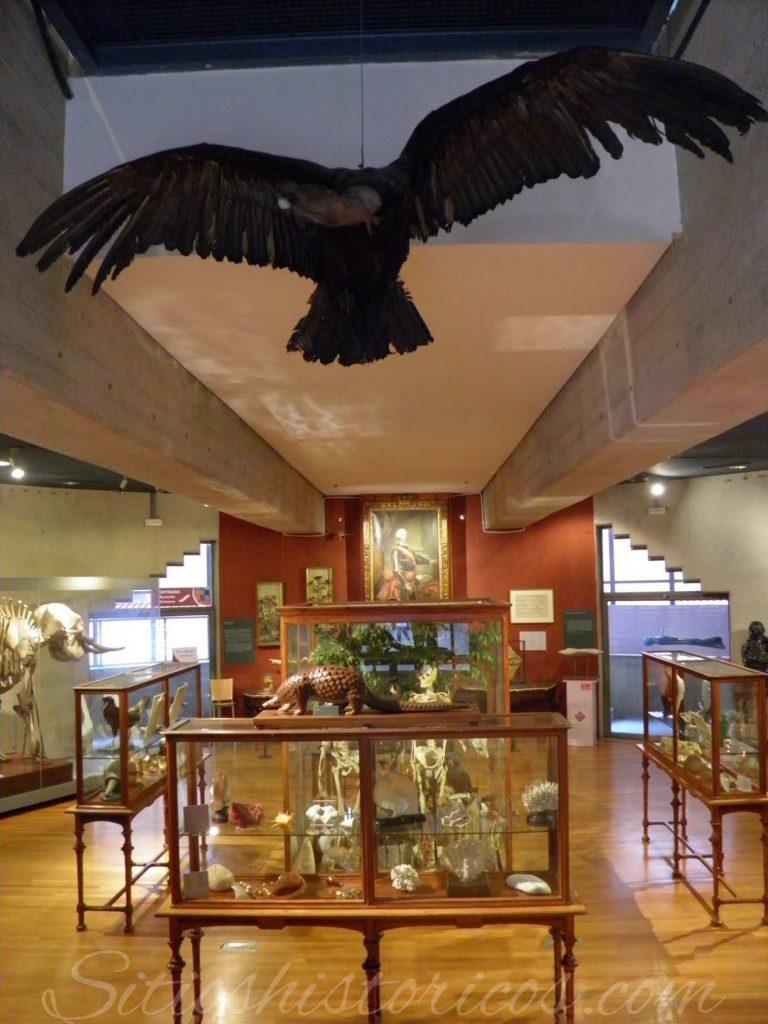 Museos históricos