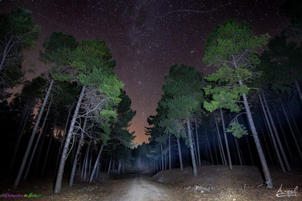 Reserva Starligh Andalucía