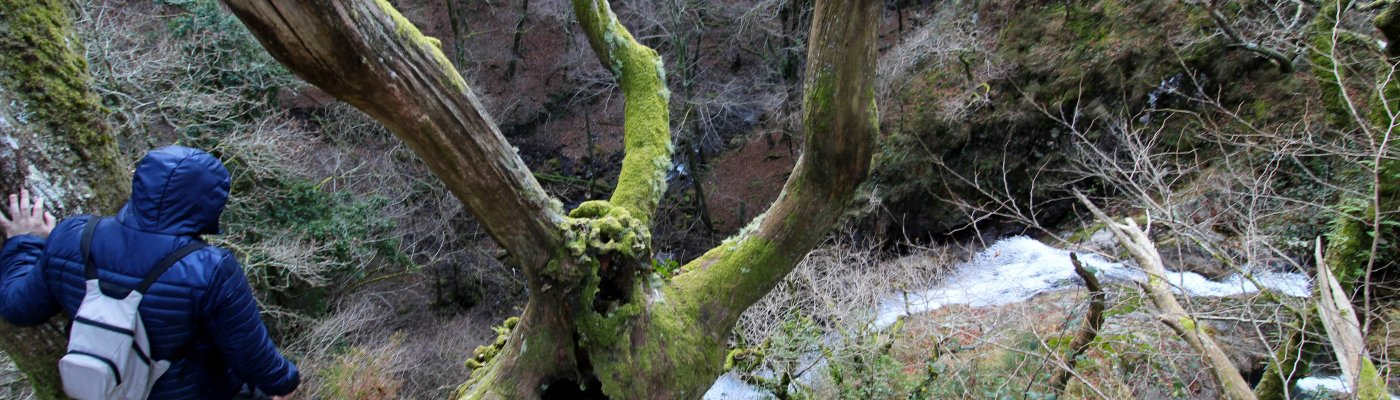 Cascada de Artikutza