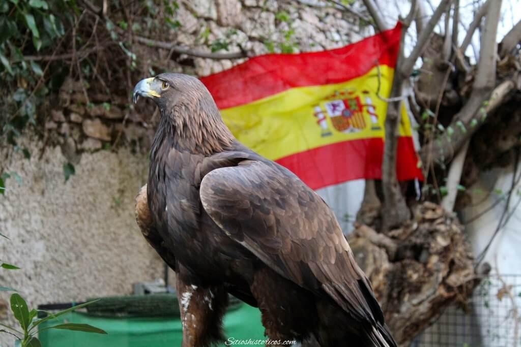 Águila España